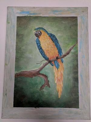 Parrot Acrylic on Canvas Blue Orange Brown Branch Green Background 12x16 Gomez