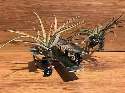 Tilla Critters Orville & Wilbur One of a Kind Airplant Creations by Chili Fies..