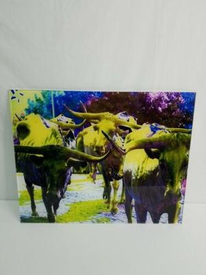 """18""""x22.5"""" Acrylic Wall Hanging Art Print Multi-Colored Longhorn Cattle BRAND NEW"""