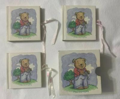 DS Max Baby Teddy Bear Photo Album Set of 3 Three Books With Otter Box Free Ship