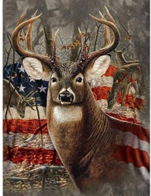 DIY Oil Painting Paint by Number Kit for Kids Adults Students Beginner Deer DIY