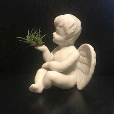 Tilla Critters Angel's Kiss One of a Kind Airplant Creations by Chili Fiesta Han