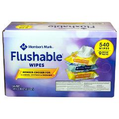 Member's Mark Flushable Wipes (9 pk, 540 wipes)**