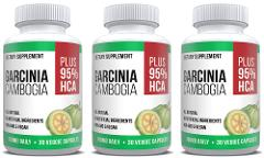 Garcinia Extract with 95% HCA Weight Loss - 3 Month Supply