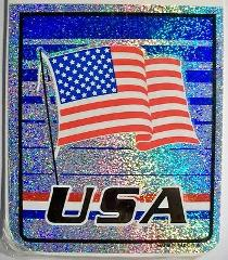 USA Vinyl Reflective Souvenir Decal