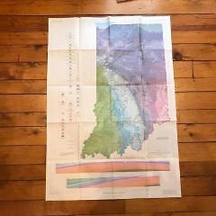 Vintage Indiana Bedrock Geologic USGS Original Chart Map 1987