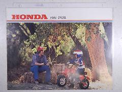 81 HONDA Z50R NOS OEM DEALER'S SALES SHEET LITERATURE BROCHURE