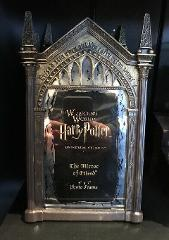 Universal Studios Wizarding World of Harry Potter Mirror Of Er...