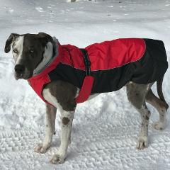Doggie Design Alpine Extreme Weather Puffer Dog Coat - Red And...