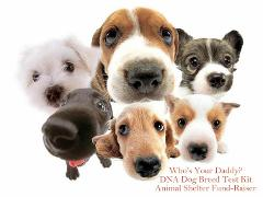 Dog DNA Breed Test Kit - Easy Accurate