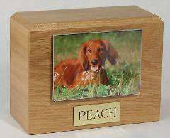 X-Large 145 Cubic Inches Oak Pet Photo Urn for Ashes with Engr...