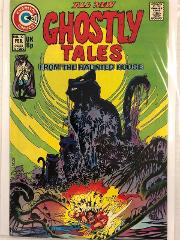 Ghostly Tales #110 Comic Book Charlton 1974
