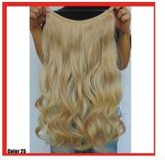 GOLDEN BLONDE #25 HALO STYLE WIRE HAIR EXTENSIONS 24