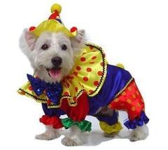 Shiny Clown Halloween Dog Pet Costume With Hat PamPet Sizes 0-6