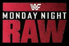 WWF/WORLD WE Monday Night Raw (Monthly Vol.1993-2009) (DVD Sets)
