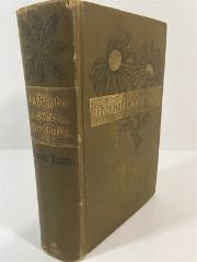 The Chamber Over The Gate - Margret Holmes HC 1886 First Edition